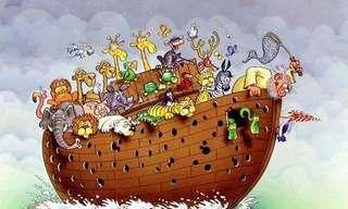 דברים שלומדים מתיבת נוח