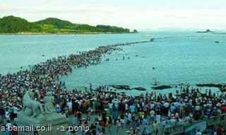 נס קריעת ים סוף - עכשיו בקוריאה!