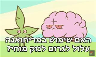 סרטון הסבר על הקשר בין שימוש במריחואנה לנזק מוחי
