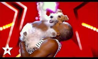 מופע הפעלולים והריקוד הנפלא של לולו - הכלבה הכי שמחה בעולם!