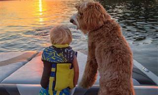 באדי המאומץ וכלבו רייגן מפגינים חברות אמיצה ומקסימה!