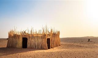 איך מוכרים שואב אבק באפריקה? בדיחה נהדרת!