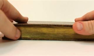 אמנות איורי השוליים המדהימה שהוצגה על ספרים בני 200 שנים