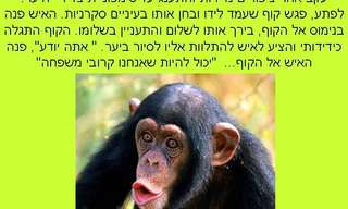 מוצא הקוף - סיפור עם מוסר השכל על בני האדם