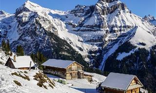 יופיו של החורף מוצג באוסף תמונות מרהיב!