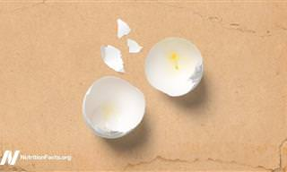זו כמות הצריכה השבועית המומלצת של ביצים כדי למנוע סרטן
