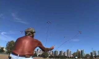 עפיפונים מפלרטטים עם הרוח - מקסים!