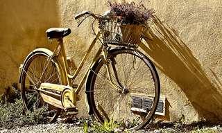 על החיים ועל האופנייםמאת הרב אריה מרקמן