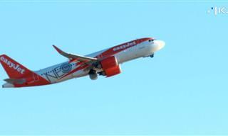מחיר הלואו-קוסט: מה אתם באמת משלמים על הטיסות הזולות?