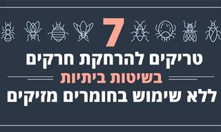 7 טריקים להרחקת חרקים בשיטות ביתיות