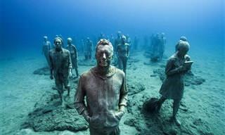 15 פסלים תת-ימיים של ג'ייסון טיילור