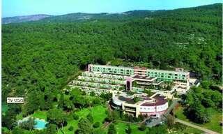 מלון יערות הרכמל!