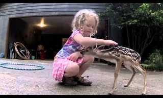 סרטון קצר על קשר מיוחד בין ילדה ועופר קטן