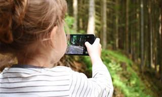 ניסוי טלוויזיוני חושף מה ההשפעה של חשיפה למסכים על מוחם של ילדים קטנים