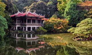 מפה אינטראקטיבית שתוציא אתכם לטיול ברחבי יפן המדהימה