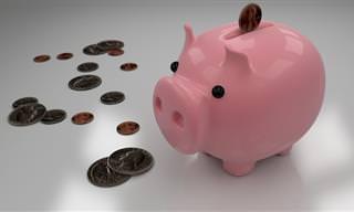 אוסף מדריכים מועילים לחיסכון כלכלי בכל תחום