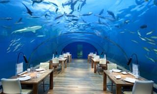 12המסעדות המיוחדות והיצירתיות ביותר בעולם