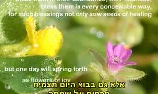צרור מילים מקסימות של ברכה