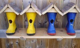 12 עיצובים מקוריים לקני ציפורים שיקשטו לכם את הגינה והמרפסת