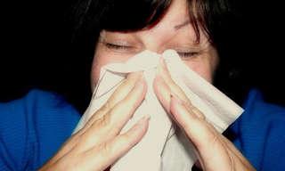 5 סוגי אלרגיות נפוצים ודרכים להתמודד איתן