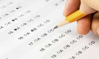 בחן את עצמך - מהי רמת ההשכלה שלך על פי ידע כללי?