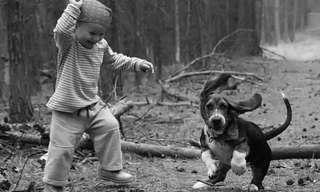 גונבים את ההצגה - ילדים והכלבים שלהםהחיה הראשונה של הילד תורמת לו רבות, הוא מגיב בצורה עדינה וטובה לילדים אחרים, ההערכה העצמית שלו גדלה, וכן קצב ההתפתחות הפיזית והנפשית שלו.