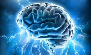 19 עובדות מעניינות על המוח האנושי