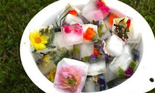 מדריך להכנת קרחוני פרחים לטיפוח העור או לנוי