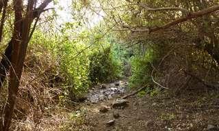 טיול מיתולוגי מקסים בעמק הירדן - למיטיבי לכת!