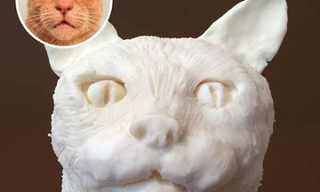 פסלים מדהימים מעוגיות אוראו!