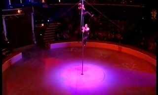 מופע מדהים של טנגו ואקרובטיקה על עמוד