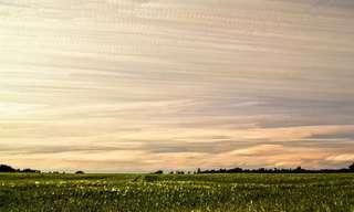 אמן שמנצל את העננים לטובתו