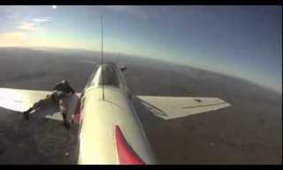 פעלולן יושב על כנף מטוס!