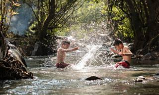 הכירו את היעדים הכי שווים לטיול וארוחה משפחתית בטבע ברחבי הארץ