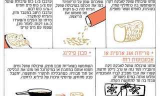 10 שימושים מפתיעים בשיבולת שועל