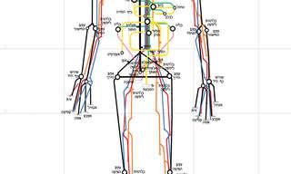 מפת גוף האדם