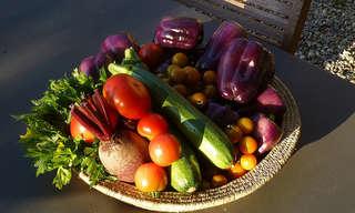 12 טיפים שימושיים למניעת בזבוז של אוכל!