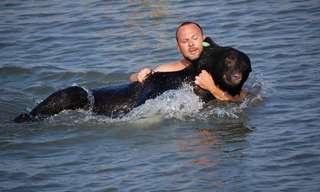 תמונות מרגשות של בני אדם מצילים חיות