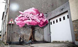 ציורי קיר גדולי ממדים - אמנות רחוב מדהימה