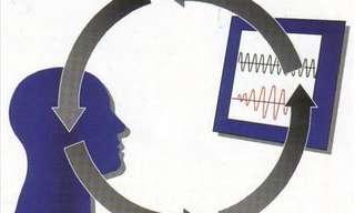 """שיטת הביופידבק - מהות ומשמעותמאת ד""""ר יגאל גליקסמן"""