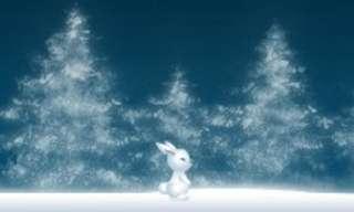 פעמוני שלג - משחק חורפי ממכר