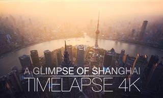 הצטרפו אל קצב החיים המהיר בשנגחאי עם הסרטון המדהים הזה...