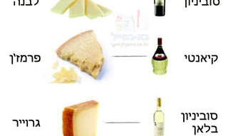 לגזור ולשמור: טבלה שימושית לגבינות ויין