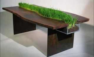 רהיטים בעיצובים מיוחדים