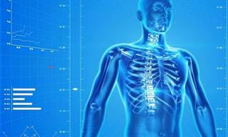14 טיפים שיעזרו לכם לשמור על עצמות בריאות וחזקות