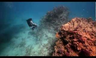 כסא גלגלים מתחת למים - מעורר השראה!