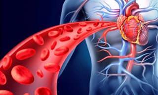 כיצד לזהות ולטפל בבעיות בזרימת הדם - חשוב!