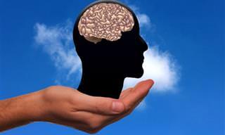 איך הלחץ משפיע על המוח וכיצד ניתן למגרו?