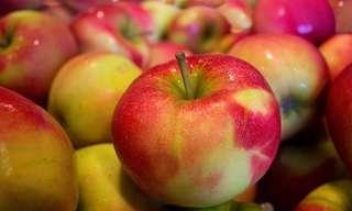9 דרכים מומלצות לשילוב תפוחים בתפריט היומי