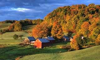 משל החווה והאהבה